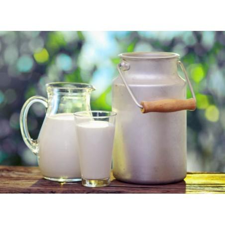 UHT млека
